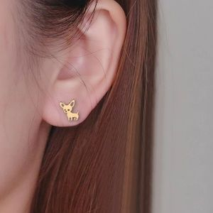 Jewelry - New! Rose Gold Chihuahua Ear Studs